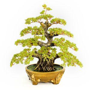 cay tai loc may man bonsai da thach anh xanh